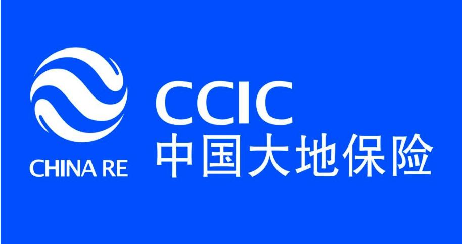 中国大地保险学院附小足球赛快乐进行中